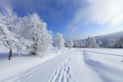 Športovanie v zimnom odbodbí
