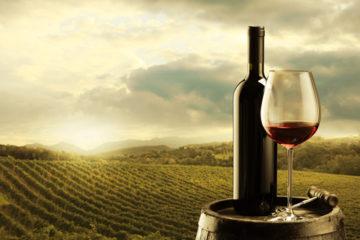 Tieto fakty o víne a jeho konzumácií vás prekvapia!