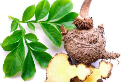 Zázračná rastlina konjak poteší vašu pleť itrávenie. Počuli ste už onej?