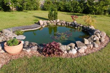 Zvoľte správnu starostlivosť o vaše záhradné jazierko