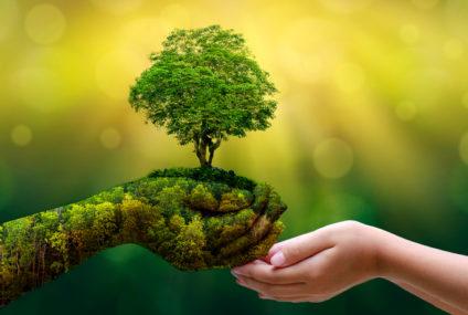 Slovenské firmy sa začínajú orientovať na dlhodobo udržateľný rozvoj