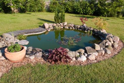 Čo všetko by ste mali vedieť, ak si chcete na záhradke vytvoriť pekné záhradné jazierko?